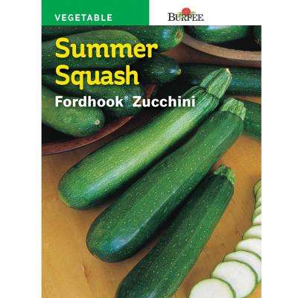 Squash Summer Burpee's Fordhook Zucchini Seed