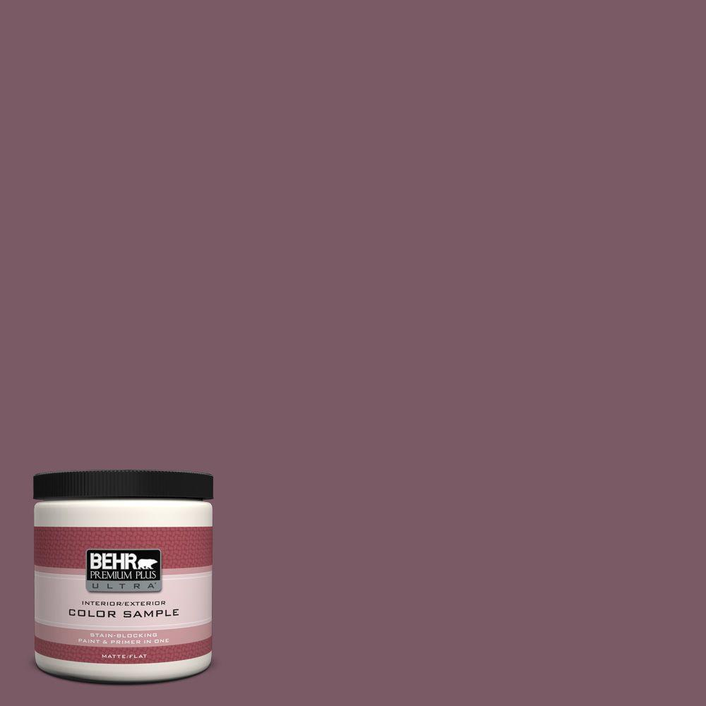 8 oz. #ICC-84 Simply Elegant Flat/Matte Interior/Exterior Paint Sample