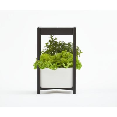 Twelve Indoor Growing System