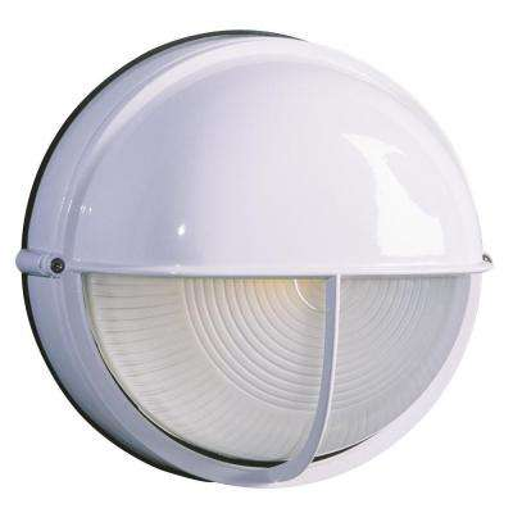 Negron 1-Light Outdoor White Wall Light