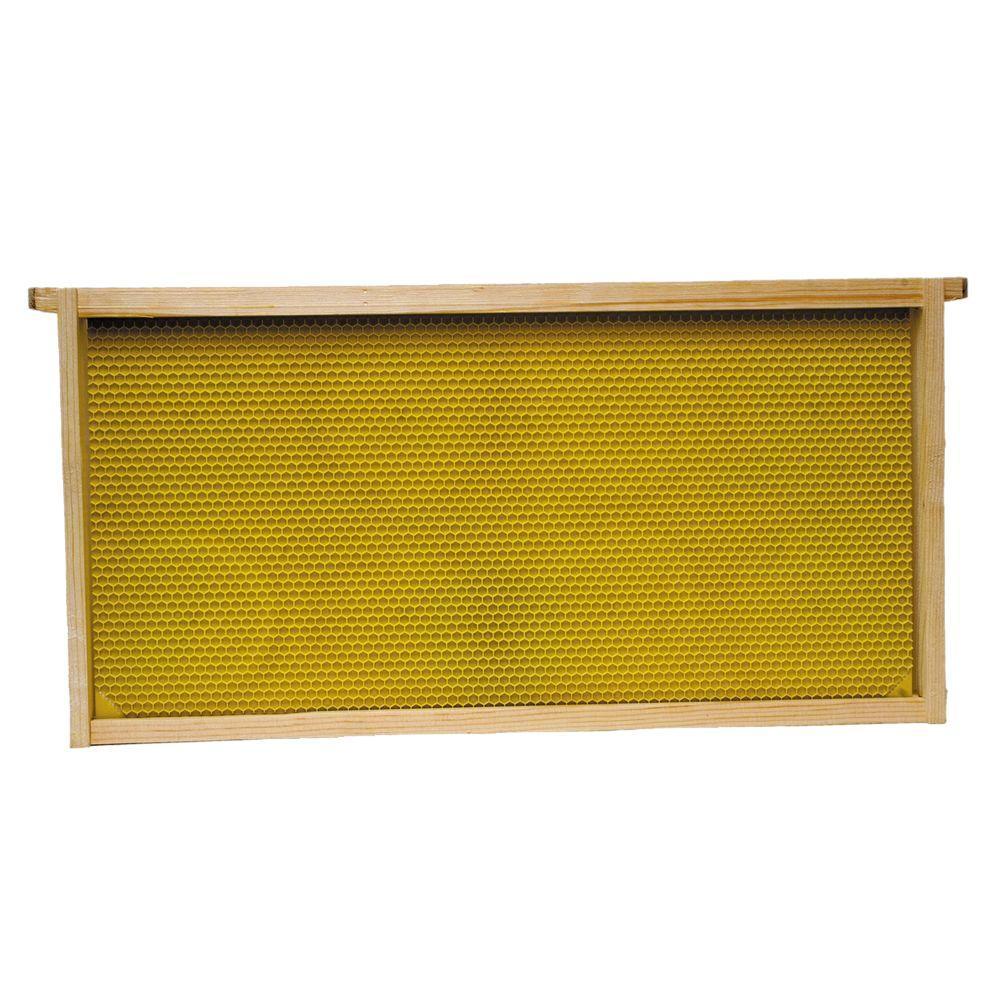 Harvest Lane Honey WWBCM-102 Medium Honey Super Box with 10 Frames /& Foundations