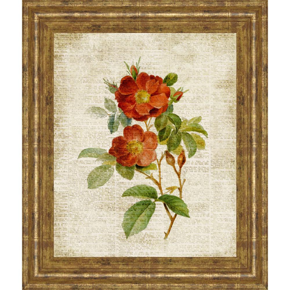 "22 in. x 26 in. ""Roses on Newsprint II"" by Lanie Loreth Framed Printed Wall Art"