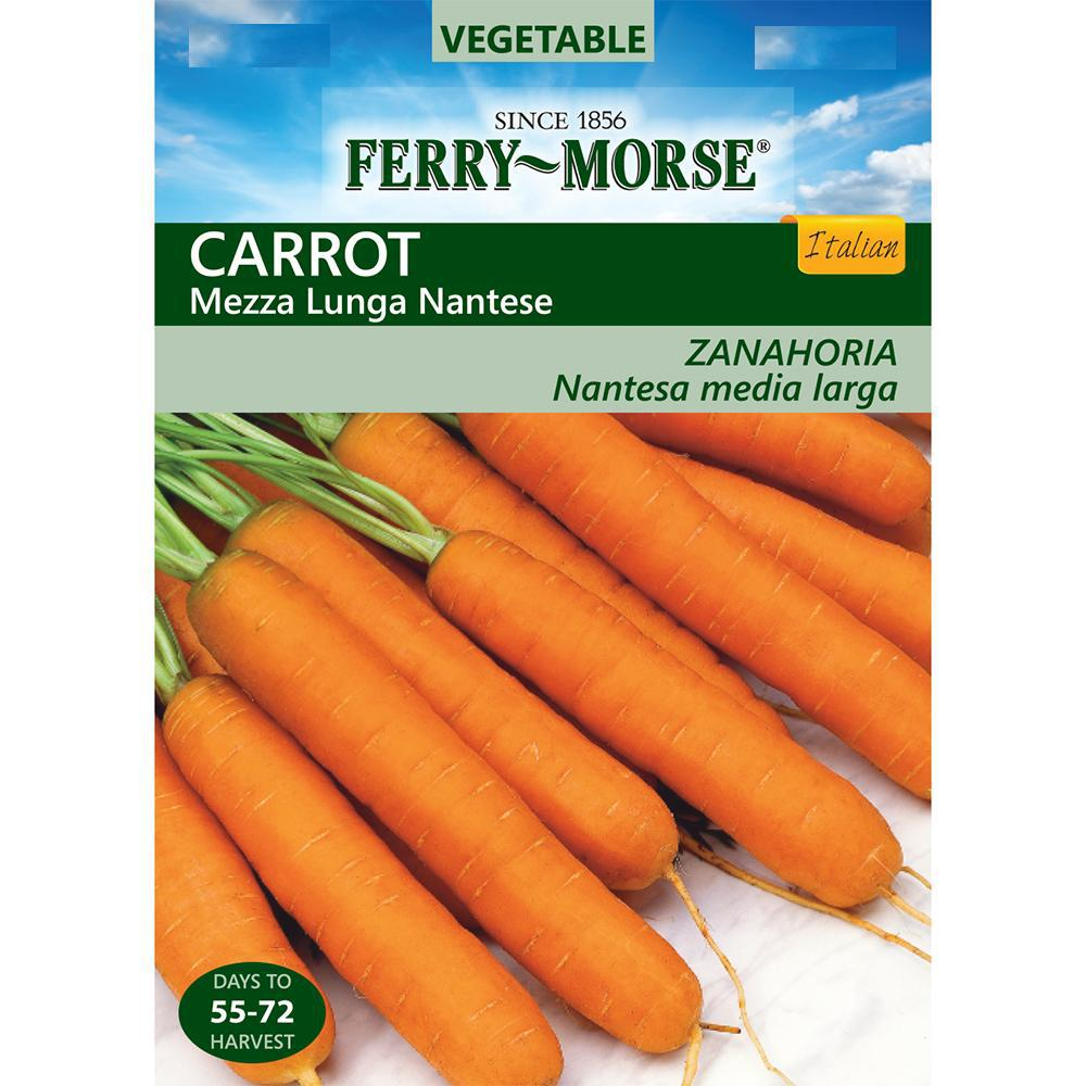 Carrot Mezza Lunga Nantese Seed