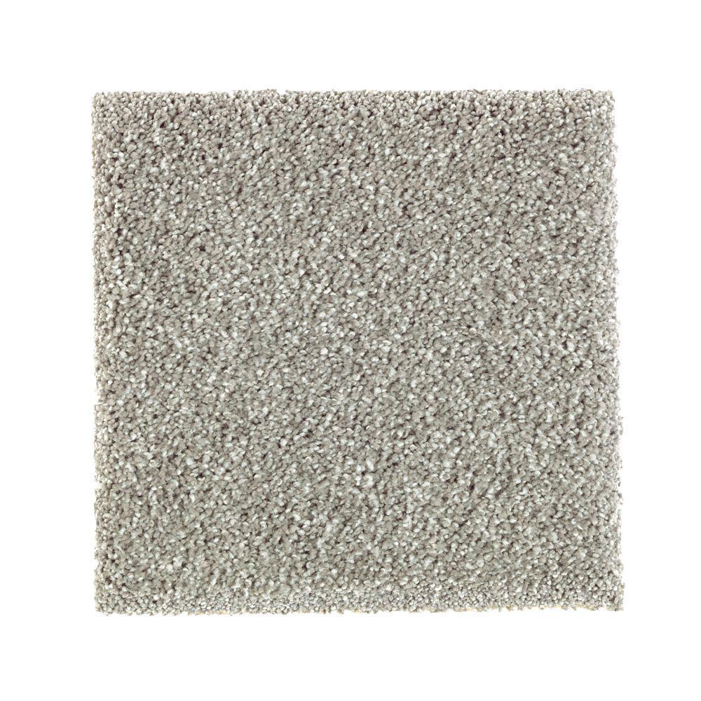 PetProof Whirlwind II - Color Meandering Texture 12 ft. Carpet