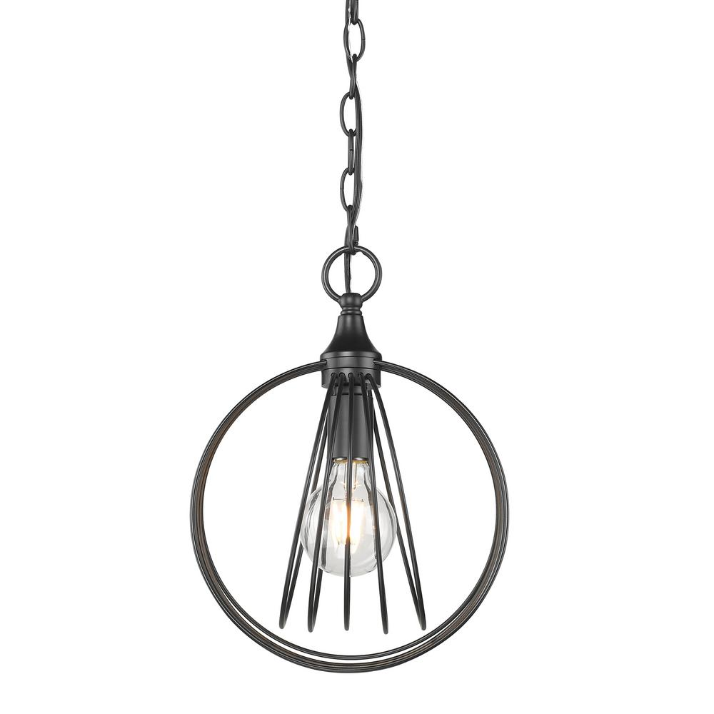 Quinn 1-Light Black Chandelier