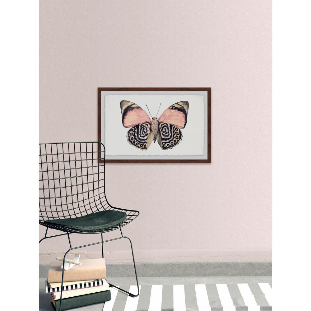 Gilded Buffalo Canvas Artwork 24 x 24 Global Gallery Chris Paschke
