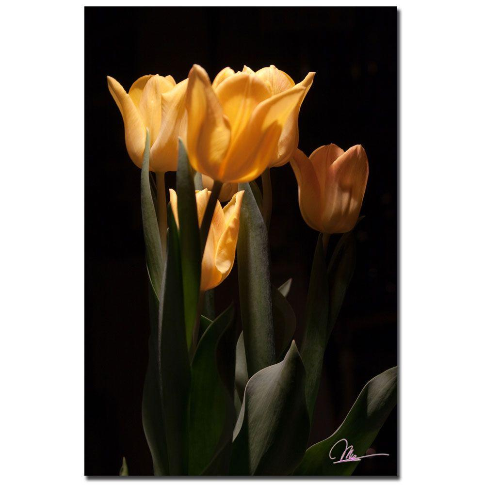 24 in. x 16 in. Tulips Blooms VI Canvas Art