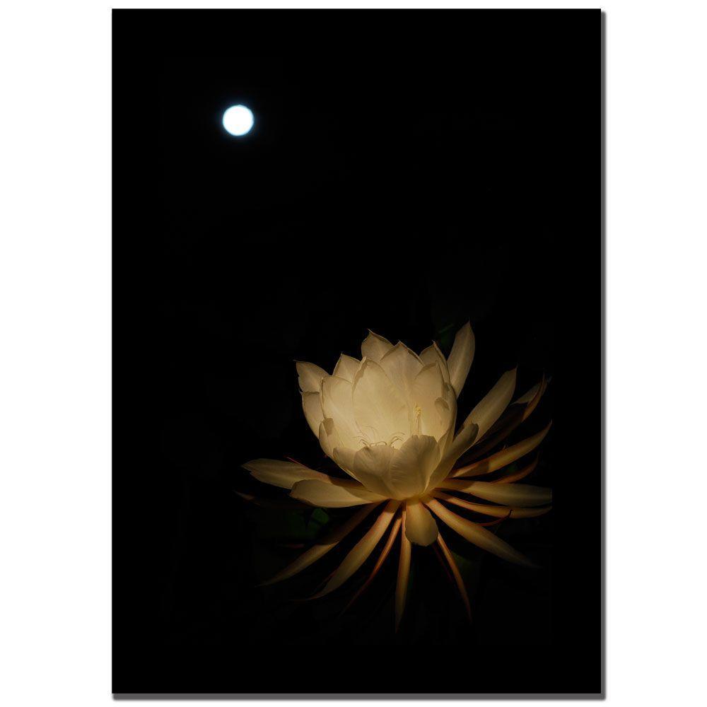 24 in. x 16 in. Full Moon Bloom Canvas Art