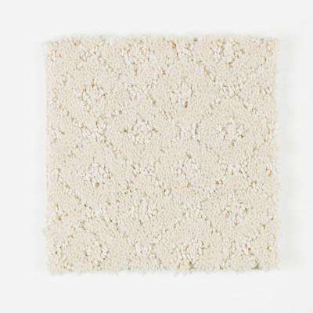 Carpet Sample - Sawyer - Color Appaloosa Pattern 8 in. x 8 in.