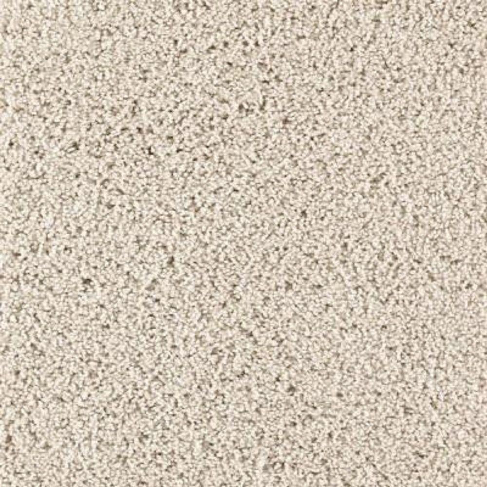 Carpet Sample - Ashcraft II - Color Beachcomber Texture 8 in. x 8 in.
