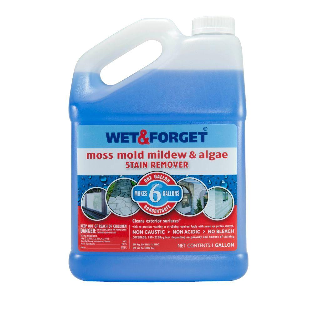 wet forget 1 gal moss mold mildew and algae stain remover 800006