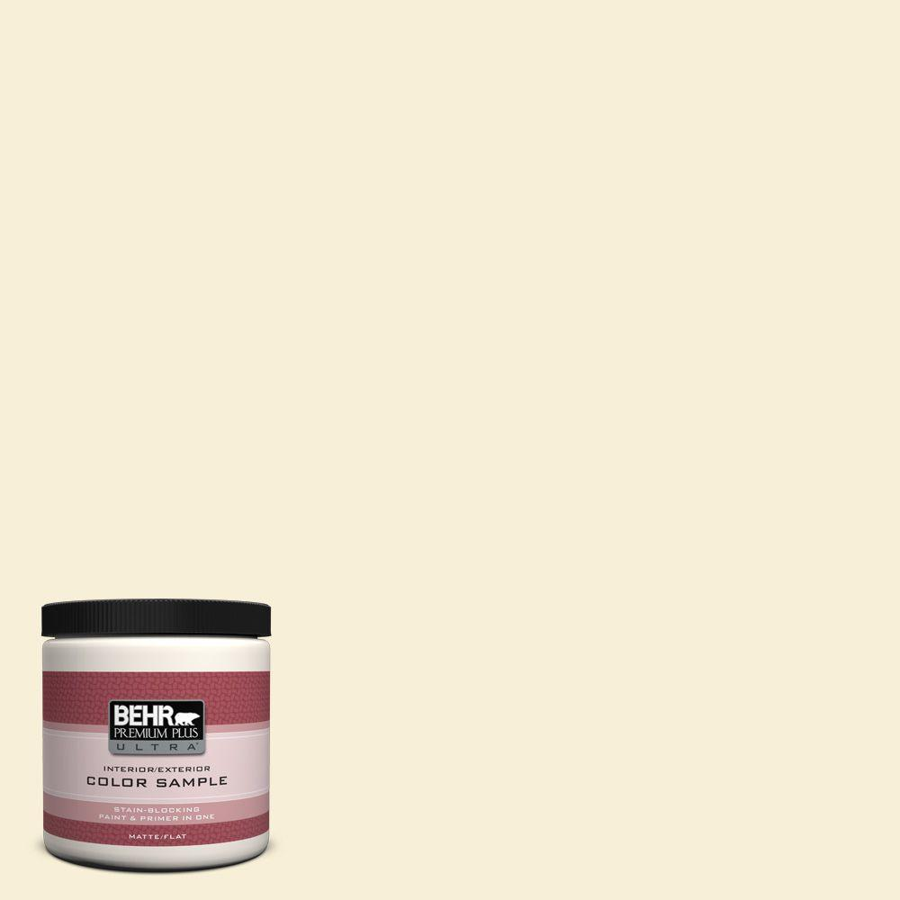 BEHR Premium Plus Ultra 8 oz. #380A-1 Milkyway Galaxy Matte Interior/Exterior Paint and Primer in One Sample