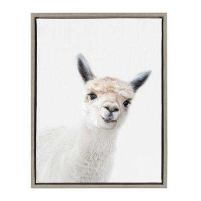 "Sylvie ""Animal Studio Alpaca"" by Amy Peterson Framed Canvas Wall Art"