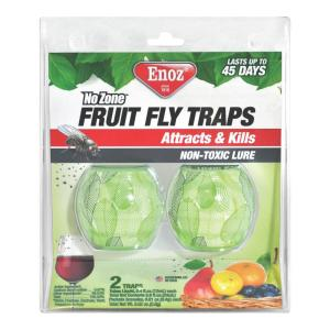Awesome Terro Fruit Fly Trap 2 Pack T2502 The Home Depot Complete Home Design Collection Papxelindsey Bellcom