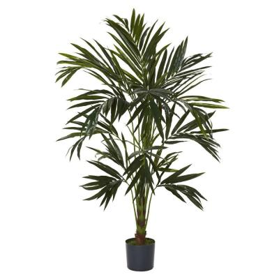 6 ft. Green Kentia Silk Tree
