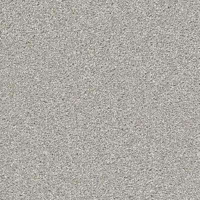 Soft Breath II - Color Willow Texture 12 ft. Carpet