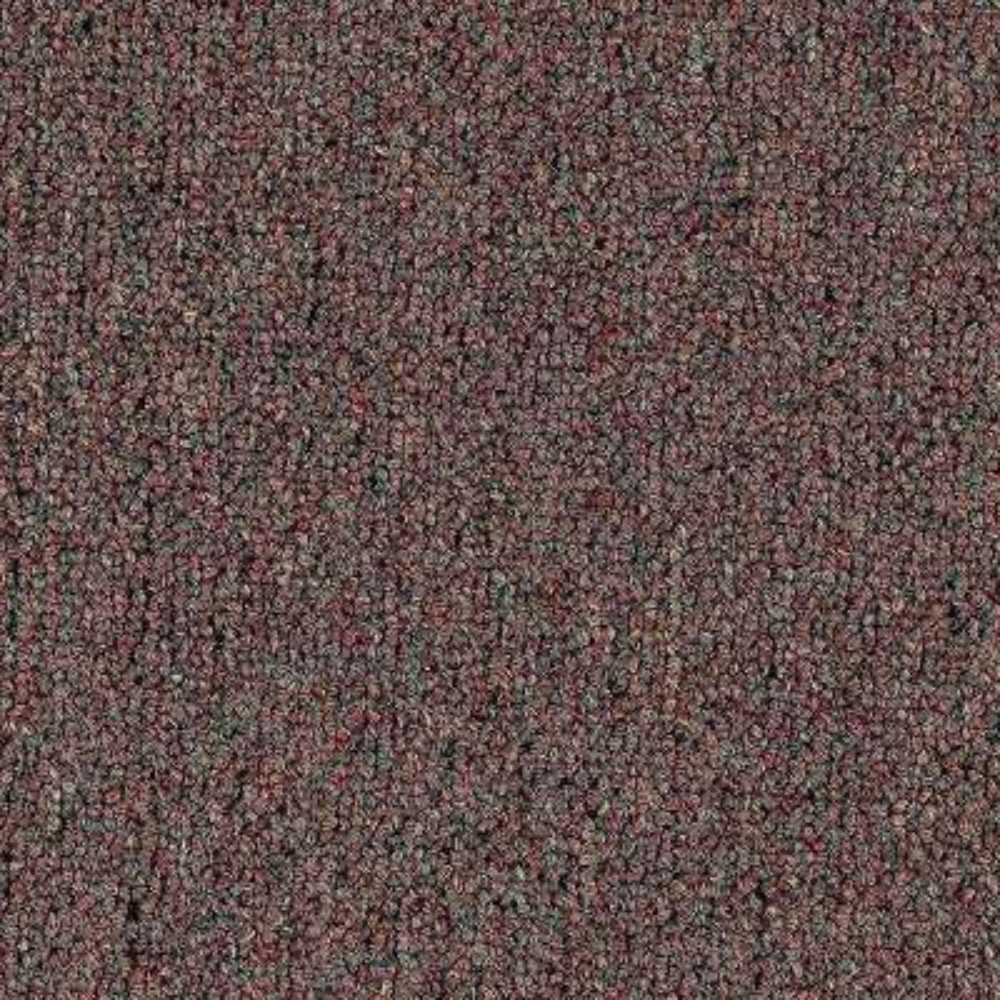 Carpet Sample - Top Rail 26 - Color Rockweed Loop 8 in. x 8 in.