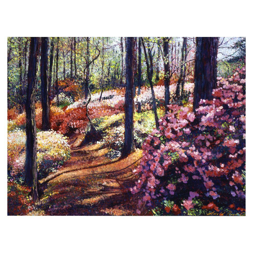 24 in. x 32 in. Azalea Forest Canvas Art