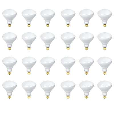 300-Watt Soft White (2700K) R40 Dimmable Incandescent 130-Volt Pool and Spa Flood Light Bulb (24-Pack)