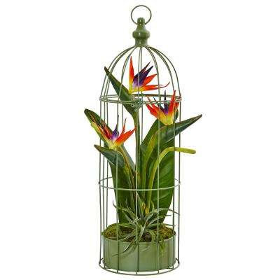 Indoor Tropical Birds of Paradise Artificial Arrangement in Decorative Bird Cage