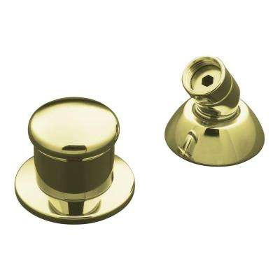 Two-Way Diverter Valve and Handshower Hose Guide in Vibrant French Gold
