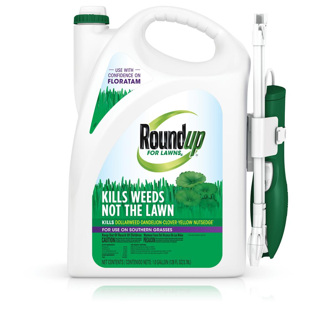 Roundup Roundup for Lawns 4 Ready-to-Use Wand 1 Gal. (Southern)