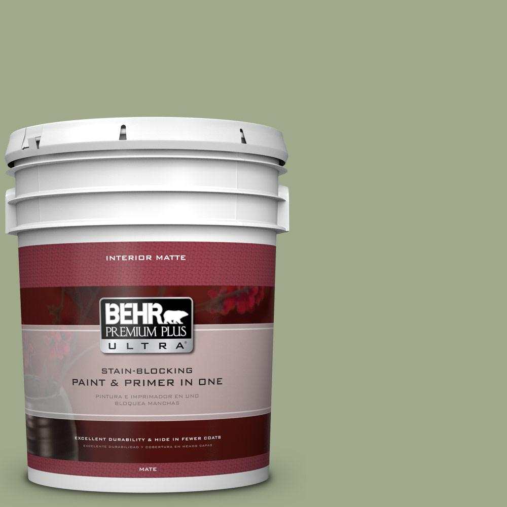 5 gal. #PMD-36 Mountain Sage Flat/Matte Interior Paint