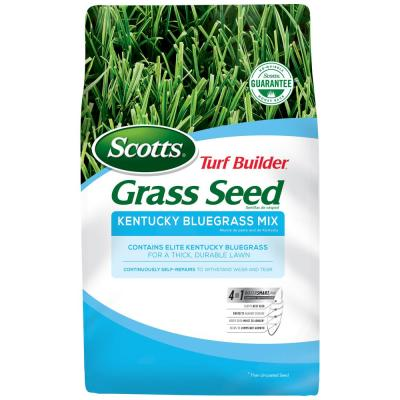 7 lb. Turf Builder Kentucky Bluegrass Mix Seed