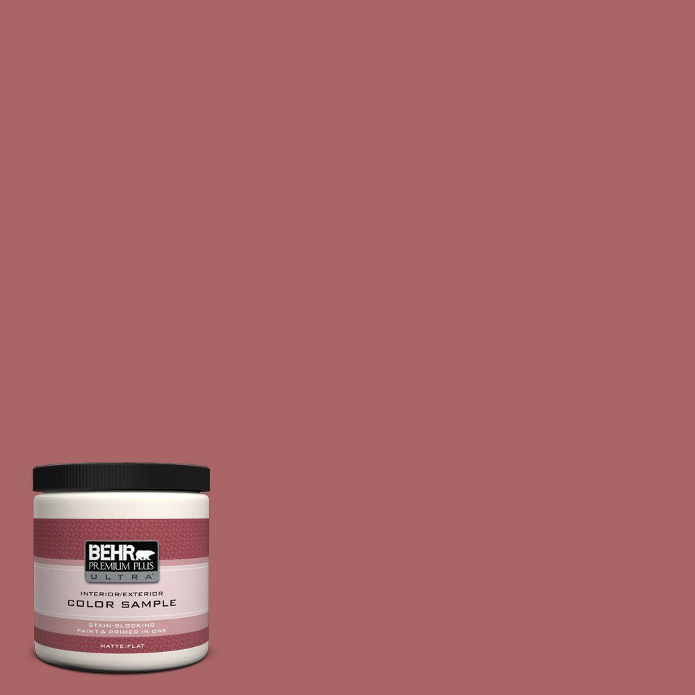 8 oz. #PPU1-6 Rose Marquee Interior/Exterior Paint Sample
