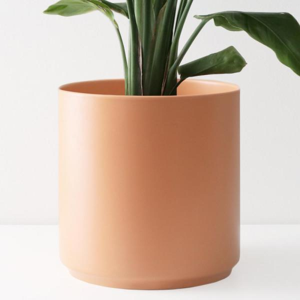 10 in. Peach Ceramic Indoor Planter (7 in. to 12 in.)