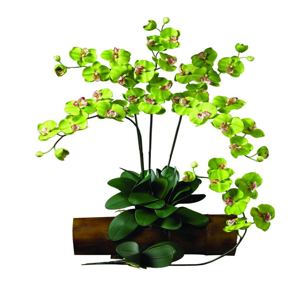 31.5 in. H Green Phalaenopsis Stem (Set of 12)
