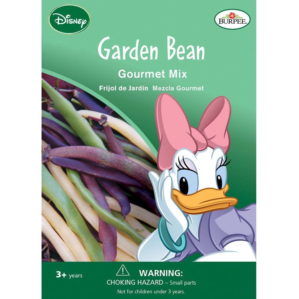 recipe: bush bean seeds home depot [28]
