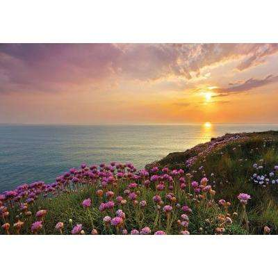 100 in. x 145 in. Land's End Wall Mural