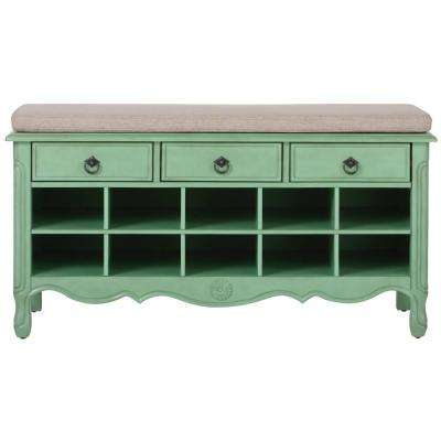 Keys 20 in. H Aquamarine Shoe Storage Cabinet