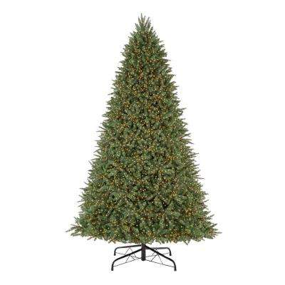 9 ft. Pre-Lit LED Cavalier Fir Color Changing 8-Function Artificial Christmas Tree with 10000 Micro Dot Lights