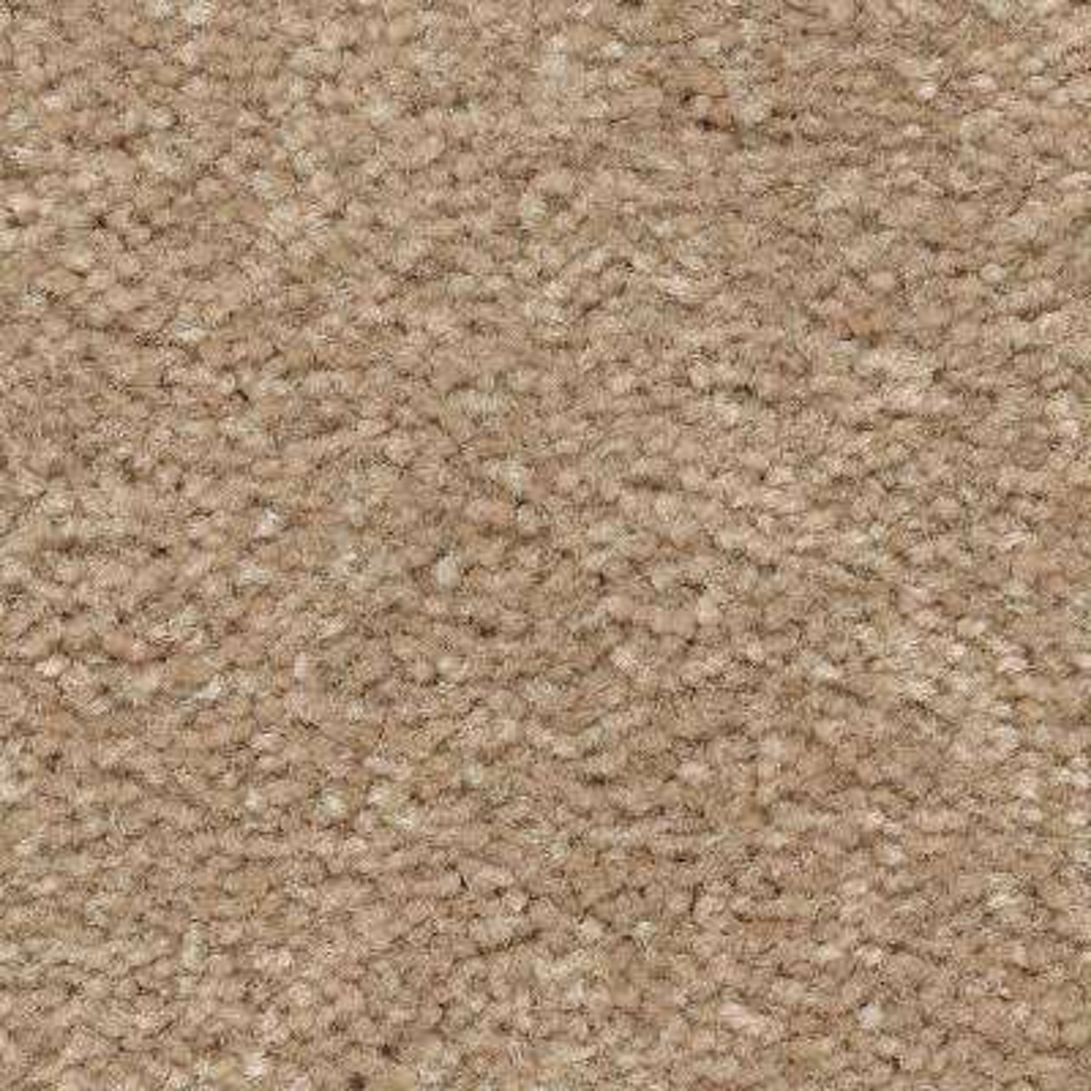 Carpet Sample - Mason I - Color Avalon Texture 8 in. x 8 in.