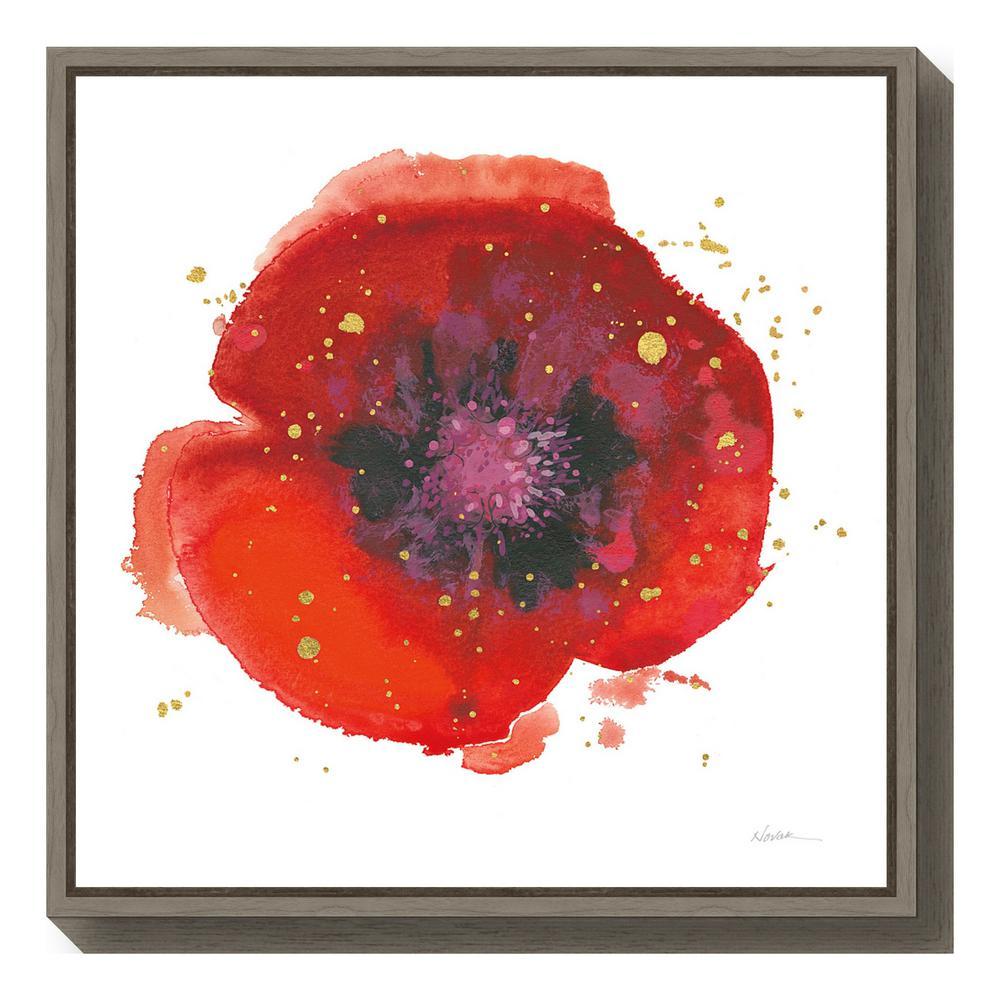 """""""Splash V with Gold Poppy"""" by Shirley Novak Framed Canvas Wall Art"""