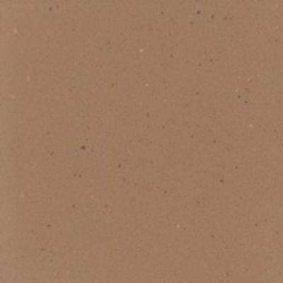 2 in. x 2 in. Solid Surface Countertop Sample in Fawn