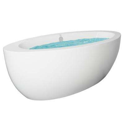 73 in. Acrylic Oval Double Ended Flatbottom Freestanding Bathtub in White with Overflow