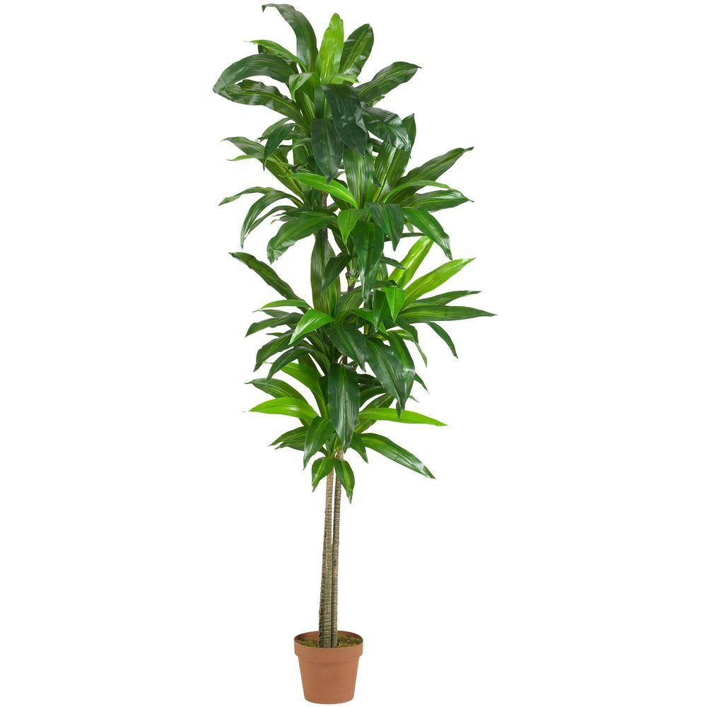 nearly natural real touch 6 ft. dracaena silk plant-6596 - the home