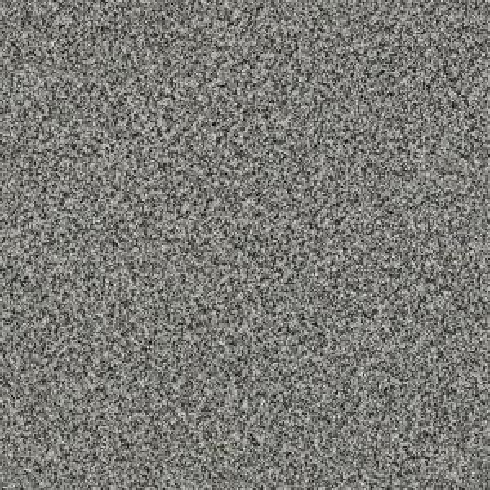 Shaw Carpet Sample Bonanza I Color Ash Fog Twist 8 In