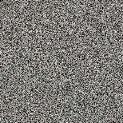 Carpet Sample Bonanza I Color Ash Fog Twist 8 In X