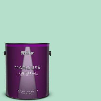 1 gal. #MQ4-18 Free Spirit One-Coat Hide Ceiling Flat Interior Paint and Primer in One