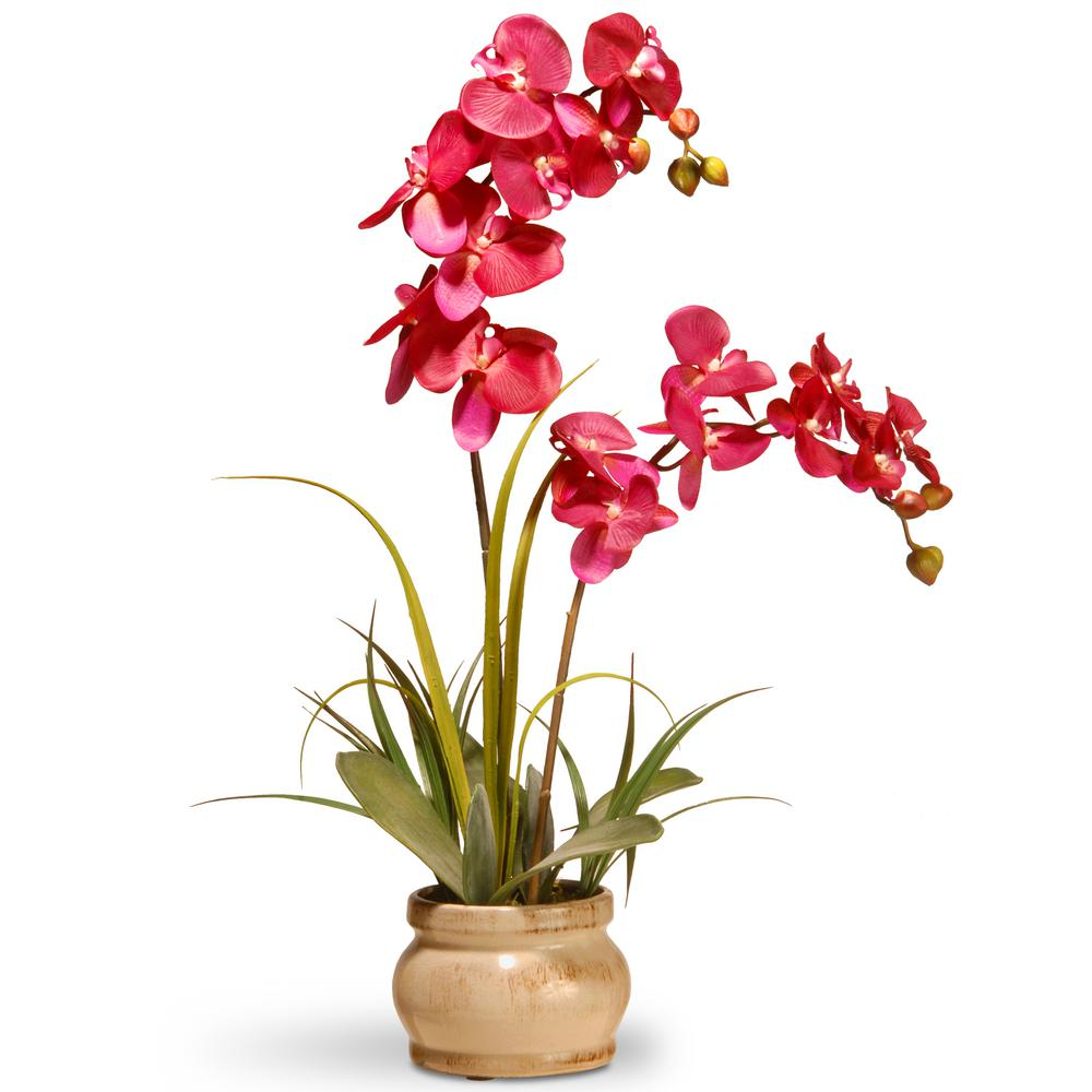 24 in. Pink Orchid in Ceramic Pot