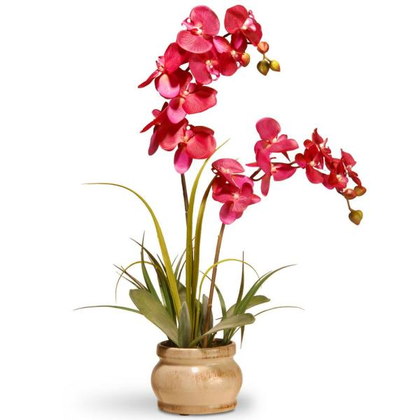 National Tree Company 24 in. Pink Orchid in Ceramic Pot RAS-N071061-1