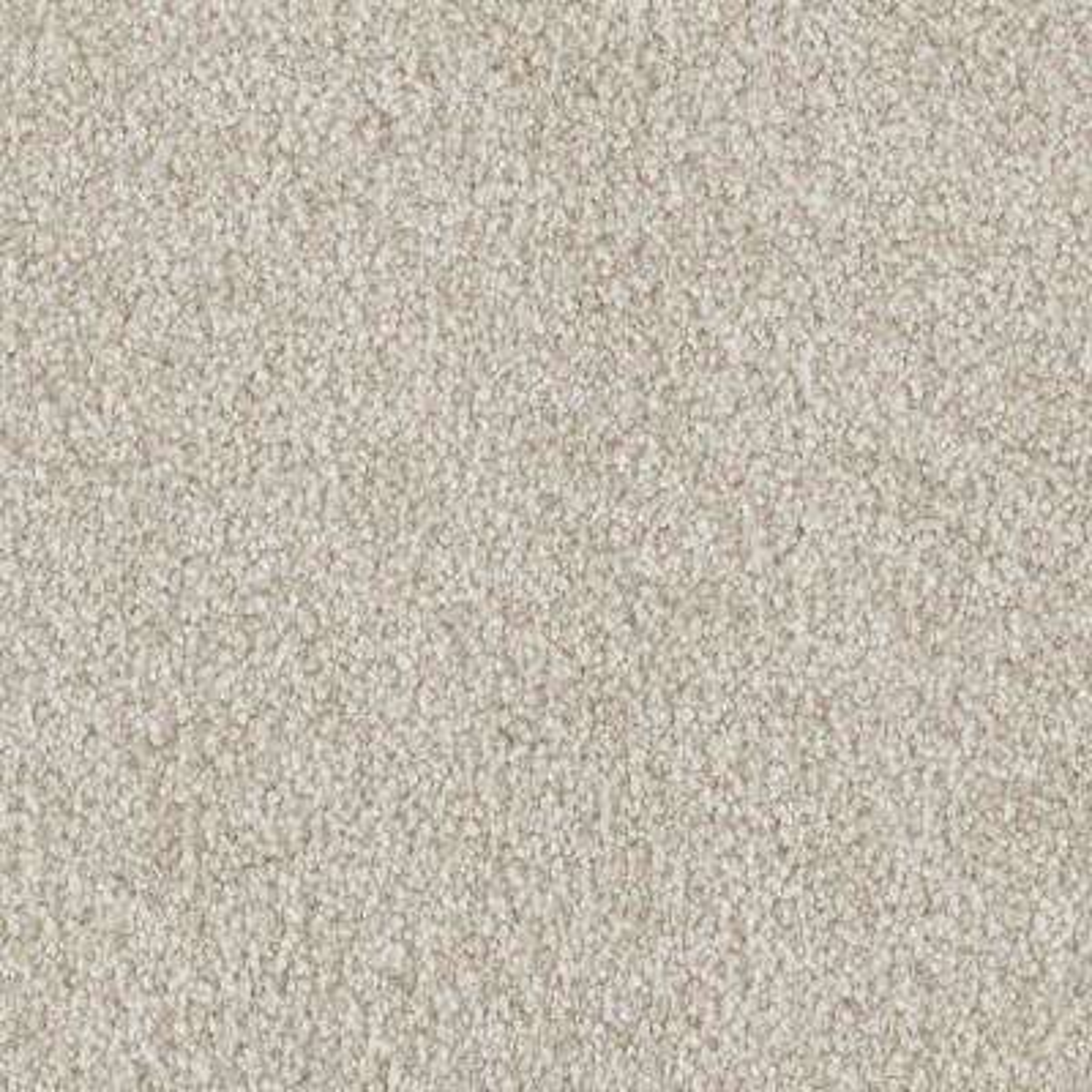 Carpet Sample - Tides Edge - Color Magnolia Textured 8 in. x 8 in.
