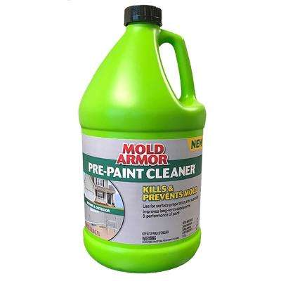 Mold and Mildew Product Paint Thinner Solvents & Cleaners Paint