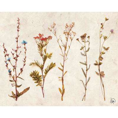 """20 in. x 24 in. """"4S Dry Brown Flowers"""" Planked Wood Wall Art Print"""