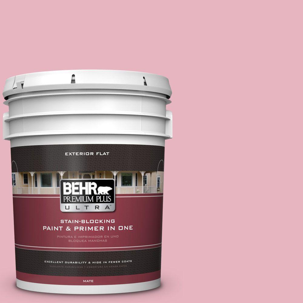 5-gal. #M140-3 Premium Pink Flat Exterior Paint