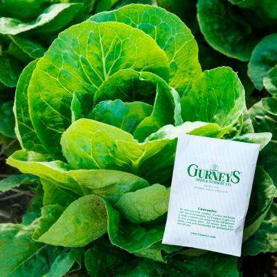 Lettuce Romaine Paris White Cos (1,000 Seed Packet)